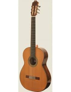 Camps GL18C o GL18S guitarra maciza profesional + Estuche