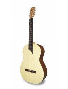 APC 1S MX guitarra de boca lateral