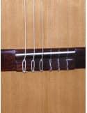 Azahar guitarra clasica iniciacion modelo 101