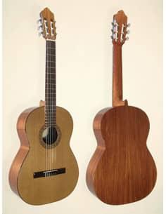 Guitarra clasica de iniciacion Azahar modelo 102