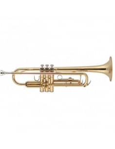 J.MICHAEL TR380 Trompeta SI bemol - Lacada